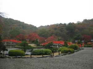 4_garden_in_the_rain