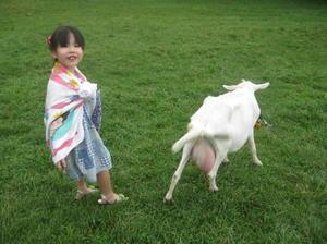 2_hokuto_goat